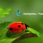 growsuppliesconsumerdirectorysteveshydroponics