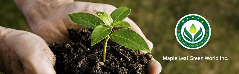 Maple Leaf Green World Inc Industry Directory