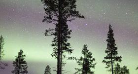 auroraimage800x700