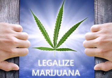 marijuanalegalizemag800x700