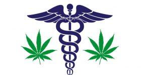 medicalimagemag800x700