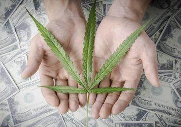 MoneyAndMarijuanaMagazineImages800X700