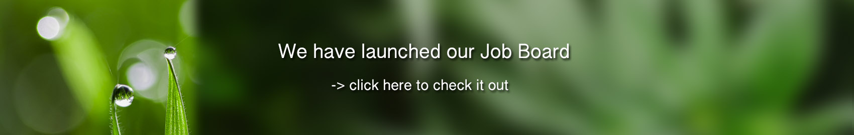 Marijuana Marijuana Jobs In Canada